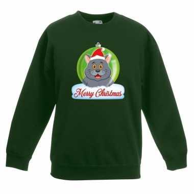 Goedkope kersttrui merry christmas grijze kat / poes kerstbal groen k
